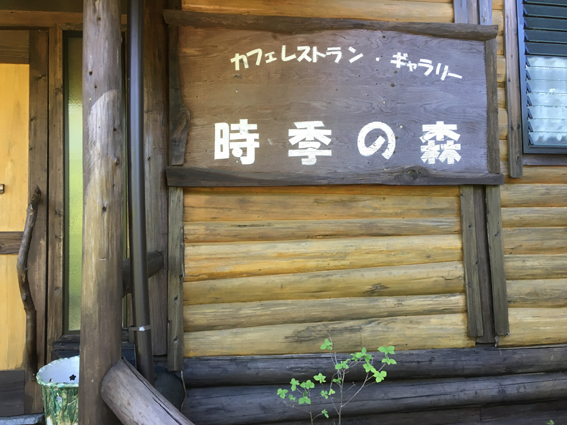 時の森.JPG
