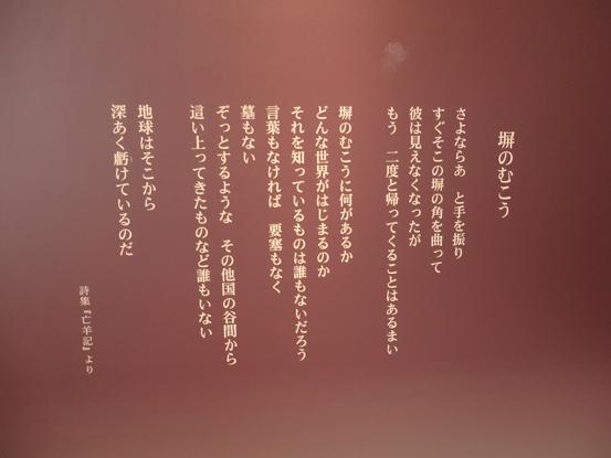 P6220263.JPG